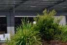 Annerley Chainlink fencing 13