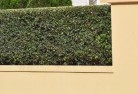 Annerley Decorative fencing 30