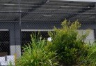 Annerley Wire fencing 20